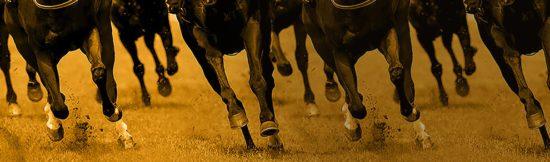 Betfair Best Odds Horseracing